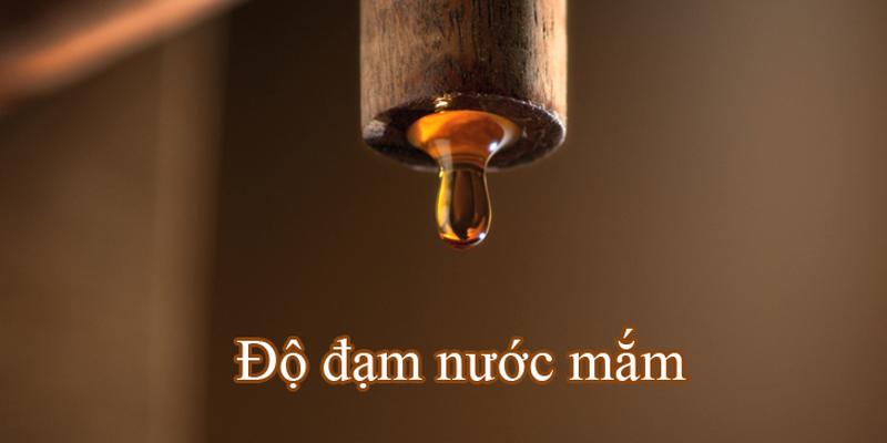 nước mắm bao nhiêu độ đạm là ngon