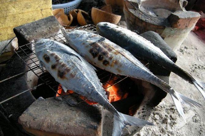 Cá sòng nướng - Món ngon Phú Quốc